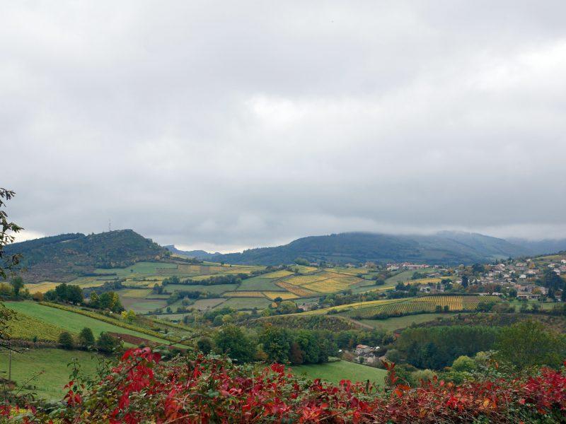 Les paysages de Berzé-la-Ville